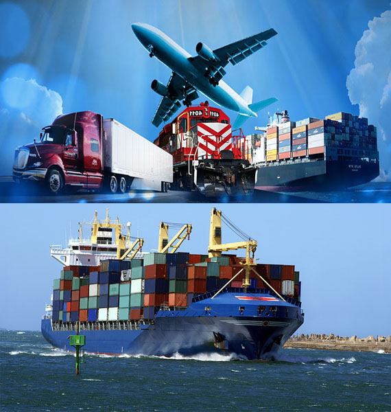 Our company offers <span>its clients</span>wide range of <span>services</span>in the field of export and import